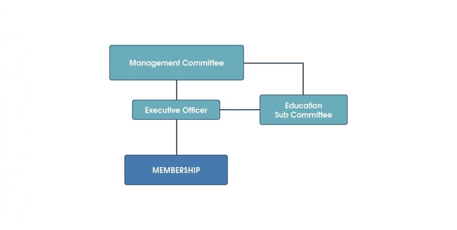OTC Organisation Structure